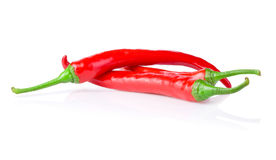 Three red chilli peppers isolated on white background Stock Images