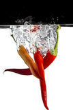 Three red chilli in water. Some red chilli thrown in water with black and white background stock photo