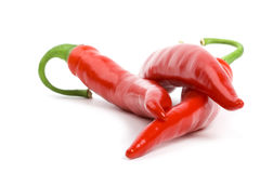 Three red chilly peppers Stock Photography