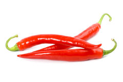 Three red chilly peppers Royalty Free Stock Photos