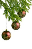Three red christmas balls, hanging on fir tree Stock Photo