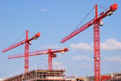 Three red cranes Stock Image