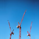 Three red cranes Royalty Free Stock Photo