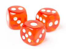 Three Red Dices in White background Stock Image