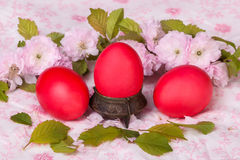Three red egg on floral background Stock Images
