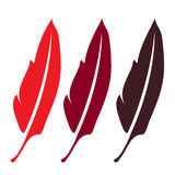 Three red feather,,elegance literature writing symbol - plume, , beautiful silhouette quill,sing for zoo bird,. Isolated object vector illustration