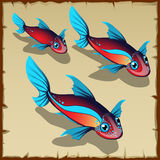 Three red fish with blue spots. Three vector red fish with blue spots Royalty Free Stock Images