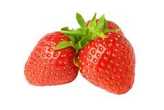Three Red Fresh Strawberries close up on white background Stock Image