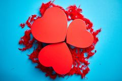 Three red, heart shaped gift boxes placed on blue background among red feathers royalty free stock photo