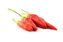 Three red hot chili pepper  Royalty Free Stock Photo