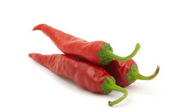 Three red hot chili peppers, isolated. Three red hot chili peppers on a white background Royalty Free Stock Images