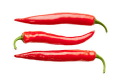 Three red hot chili peppers. Isolated on white background Royalty Free Stock Photo