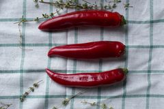 Three red hot chili peppers are lying on a draped fabric. Hurbs are used as decoration. Stock Images