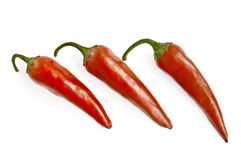 Three red hot pepper Royalty Free Stock Photos