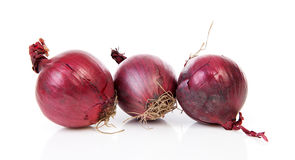 Three red onion Stock Photography