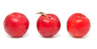 Three red plums Royalty Free Stock Photography