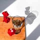 Three red poppies flowers in glass vase with water on white table and wooden background with contrast sun light and shadows close. Up top view stock photos