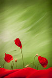 Three red poppy flowers and buds. On green background with red cloth, mid level lighting Royalty Free Stock Photography