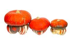 Three red pumpkins Royalty Free Stock Image