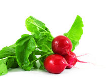 Three red radishes. Three red fresh radishes isolated on white Stock Photos
