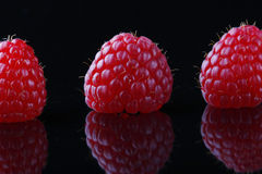 Three red raspberries on black reflective backgrou. Closeup of three fresh raspberries on a reflective background,artistically arranged Stock Photo