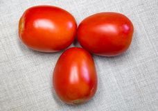 Three red Roma tomatoes. Nutritious. Great source of vitamin A and C and lycopene. It is fleshy. Plump and good for canning and making tomato paste Stock Image