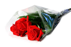 Three red roses. Three wrapped fresh red roses Stock Photography