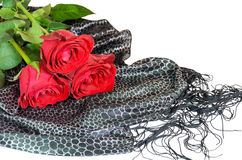 Three  red roses on black silk scarf isolated on white Stock Photography