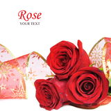 Three Red Roses Card Stock Image