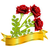 Three red roses and gold ribbon  on a white background Royalty Free Stock Photos