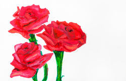Three red roses on green stems painted by felt pen Stock Photos