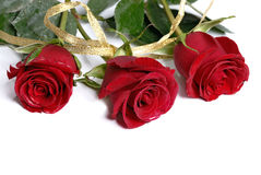 Three red roses isolated Stock Photo