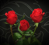 Three red roses over black backround Stock Photos