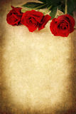 Three Red Roses over Grunge Background Royalty Free Stock Photos
