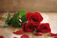 Three red roses and petals on old wood table with copy space Royalty Free Stock Photos
