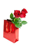 Three red roses in red gift bag on white background Royalty Free Stock Photo