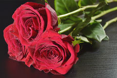 Three red roses on the table Stock Photos