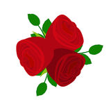 Three red roses Stock Photo