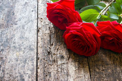 Three red roses on a wooden background with the stem Stock Photos
