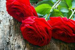 Three red roses on a wooden background with the stem and leaves Royalty Free Stock Photography