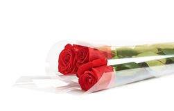 Three red roses in a wrapping Royalty Free Stock Photo