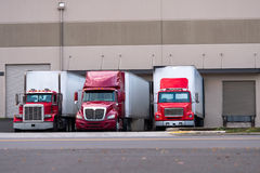 Three red semi trucks are among the dock for loading trailers. Three red semi truck manufacturers and various modifications from the classic old models to modern Stock Photography