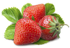Three red strawberries Royalty Free Stock Photos