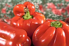 Three red sweet pepper. On a colorful background. Close up image stock photography