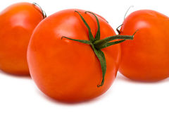 Three red tomatoes Stock Photography