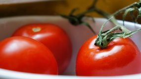 Three red tomatoes in bowl Stock Photos