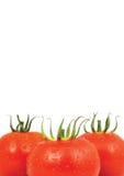 Three red tomatos isolated on white background Stock Image