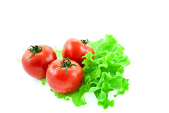 Three red tomatos on leaves of lettuce Royalty Free Stock Images
