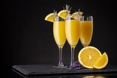 Three refreshing mimosa cocktails. Mimosa cocktails in champagne glasses with orange juice and sparkling wine decorated with lavender leaves and orange slices stock photos
