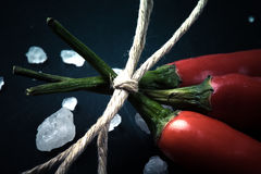 Three related twine red hot peppers on a blackboard tinted Royalty Free Stock Images